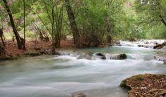 Havasu Creek Near Campgrounds