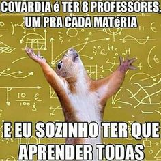Eu tenho 12 Matérias!! Funny Images, Funny Photos, Baby Shark, Funny Comics, Hunger Games, True Stories, Make You Smile, I Laughed, Haha