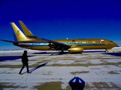 Meet the Billionaire who owns a Boeing 737 covered completely in GOLD #Boeing737, #GoldPlatedJet