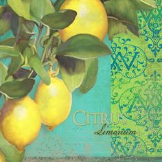 Lemon Painting - Tuscan Lemon Tree - Citrus Limonum Damask by Audrey Jeanne Roberts Cottage Kitchen Decor, Turquoise Kitchen Decor, Kitchen Decor Themes, Rustic Kitchen, Vintage Kitchen, Lemon Painting, Genius Ideas, Lemon Kitchen, Neutral