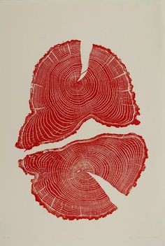 How do we overcome our obsession with growth? By Cherise Lily Nana. Art- Red Acorn tree cross section print by Bryan Nash Gill. Gravure Illustration, Illustration Art, Illustrations, Graphic Design Posters, Graphic Design Inspiration, Graphic Art, Plakat Design, Red Art, Art Inspo