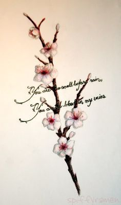 Only the best free Heart Shaped Cherry Blossom Tattoo tattoo's you can find online! Heart Shaped Cherry Blossom Tattoo tattoo's to print off and take to your tattoo artist. Apple Blossom Tattoos, Blossom Tree Tattoo, Tattoos 3d, Tatoos, Memory Tattoos, Circle Tattoos, Butterfly Tattoos, Sunflower Tattoos, Arrow Tattoos