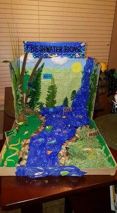 Our 3rd Grade Biome (Freshwater) Shoebox Project for school. I think it turned out pretty ok!!  ☺