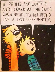Take a moment to look at the stars. They are a beautiful  reminder that we do not own the universe.