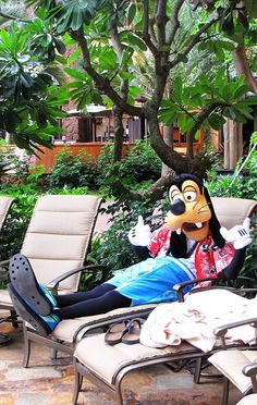 Goofy goofs off at Aulani by LauraSBly, via Flickr | For Disney travel quotes, contact Amie@GatewayToMagic.com