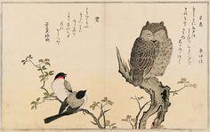喜多川歌麿の狂歌絵本 百千鳥 ミミズクと鶯