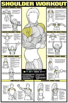 Shoulder Workout (Men's) Professional Fitness Wall Chart - F.- Shoulder Workout (Men's) Professional Fitness Wall Chart – Fitnus Corp Get fit - Body Fitness, Fitness Tips, Fitness Motivation, Health Fitness, Health Club, Workout Fitness, Free Workout, 300 Workout, Wall Workout