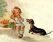 Dachshunds vintage