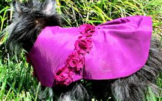 Berry Party Dress for Little Dogs  Made to by BloomingtailsDogDuds, $29.95