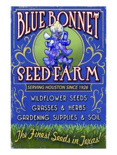 denim-and-chocolate: #vintage #seed #packages