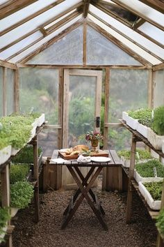 The Witches Potting Shed: simple greenhouse with a table set for lunch Simple Greenhouse, Build A Greenhouse, Greenhouse Gardening, Greenhouse Ideas, Greenhouse Wedding, Homemade Greenhouse, Indoor Greenhouse, Vegetable Gardening, Greenhouse Shelves