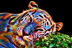 Colorful Leopard V by megaossa on DeviantArt