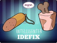 No. 5 Intelligenter Idefix