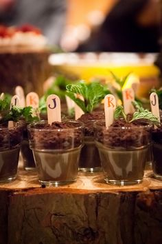 Mud Cake Wedding Dessert in flower pot for Garden wedding---this could also be a fun idea!