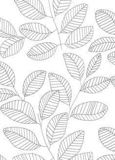 thecatspyjamasclub / leaves