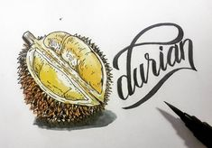 durian. . . . . #durian #fruit #indonesia #drawing #painting #sketchbook…