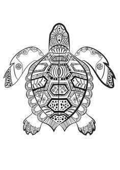 La tortue marine à colorier du dimanche