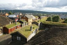 Green roofs fit right in.
