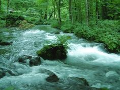 【 DNA repair anti-aging】Babble of the river+Solfeggio 528 Hz 若返り・DNA修復・記...