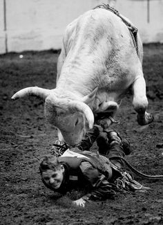 """This is called """"a situation"""". Someday's you ride the bull, someday's the bull rides you."""