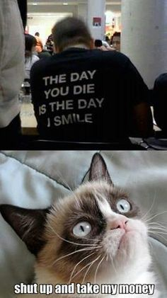 Grumpy Cat - Shut up and take my money! I want this shirtttttttttt :') Grumpy Cat Quotes, Grumpy Cat Meme, Cat Memes, Grump Cat, Lol So True, Funny Animal Pictures, Funny Images, Funny Photos, Gato Grumpy
