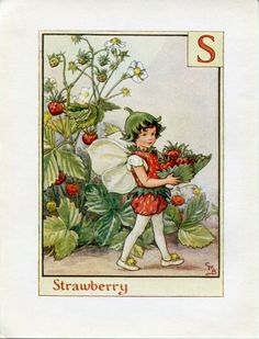Strawberry Alphabet Letter S Flower Fairy Vintage Print, c.1940 Cicely Mary Barker Book Plate Illustration by TheOldMapShop on Etsy