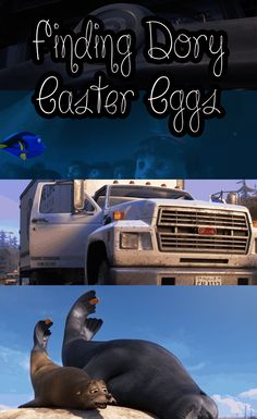 Finding Dory Easter Eggs Finding Dory Easter Eggs, Popular Movie Quotes, Easter Movies, Time Cartoon, Dvd Blu Ray, Party Activities, About Time Movie, Food Themes, Marine Life