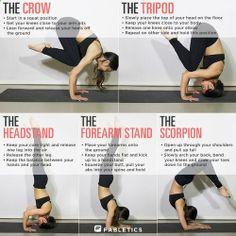 Baby steps // yoga // crow // tripod // headstand // forearm stand // scorpion