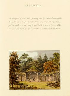 """Arboretum,"" by Humphry Repton (1813)"