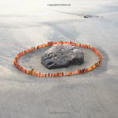 """Andy Goldsworthy - in the book, """"Earth to Earth"""" i have an interest in this piece because of the grey, bleak colours and how the leaves are a bright orange. they catch your eye and bring your attention to the rock. I like the simplicity of this piece but the affect it has on its audience is very positive"""