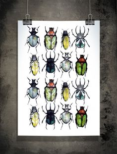 "This Monday morning I will tell about a small fear of mine, bugs. But how can one feel fear of these little creatures once you've seen this  beautiful poster ""Stop bugging me"" by Sofie Rolfsdotter."