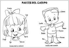 Conocemos las partes de la cara y las partes del cuerpo Spanish Practice, Spanish Lessons For Kids, Preschool Spanish, Spanish Lesson Plans, Learning Spanish, Kids Learning, Spanish Class, Classroom Fun, Classroom Activities