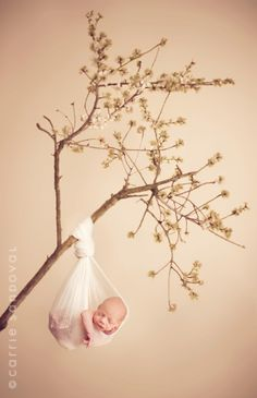 sweet newborn pic