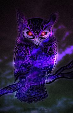 Totally Random Thomas: Ramblings of a Night Owl InsomniacYou can find Owl art and more on our website.Totally Random Thomas: Ramblings of a Night Owl Insomniac Owl Wallpaper Iphone, Tier Wallpaper, Wolf Wallpaper, Animal Wallpaper, Iphone Backgrounds, Wallpaper Wallpapers, Fantasy Kunst, Dark Fantasy Art, Fantasy Artwork