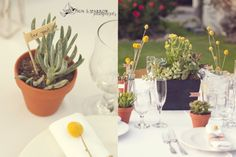 Kyle & Molly DIY wedding in Palm Springs Love succulent favors and centerpieces but want to mix in a little bit of flower prettiness