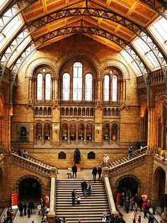 Natural History Museum, London, England | geoftheref, via Flickr