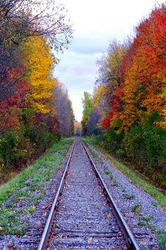 unfugbilder:  Bahnstrecken im Herbstrailway tracks during... // posted on The Urban Leaf Garden Blog // Click to see full post