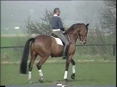 What an incredible Master lost far too soon. Dr. Reiner Klimke and Ahlerich, DVD Dressurausbildung, Dressage Training