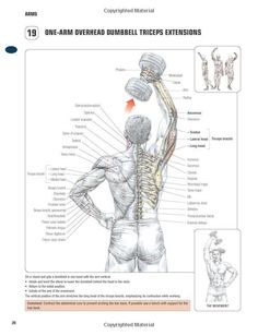 One-arm overhead dumbbell triceps extension ~ Re-Pinned by Crossed Irons Fitness #weightlossprogrammen