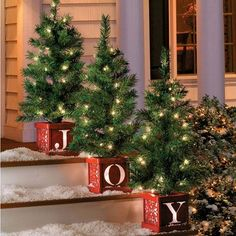 Pre-Lit Joy Indoor/Outdoor Christmas Trees-Set of 3. Very nice. You need a large, open porch & steps for these.  Multiple bad reviews; I need to just make these myself.  No dimensions given. $79.99 at ImprovementsCatalog.com, 10/29/15