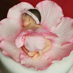 Blossom Baby More