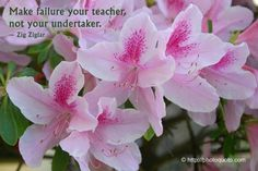 Make failure your teacher, not your undertaker. | Zig Ziglar Picture
