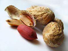 A dica de hoje do Barra de Cereal é o amendoim. Segundo a nutricionista Marcele Policarpo, se consumido na quantidade ideal, ele pode proporcionar muitos benefícios para o nosso corpo. Leia mais 10...