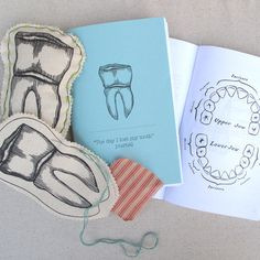 Tooth Fairy Pillow and Journal...so cute!