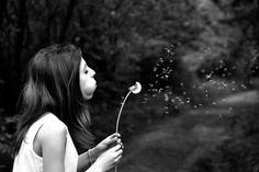 Das Pusten.  Das Mädchen pustet auf die Pusteblume (= Löwenzahn).