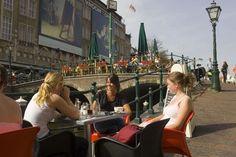 Leiden University - Leiden - Netherlands - BachelorsPortal.eu
