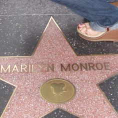 Hollywood Walk of Stars