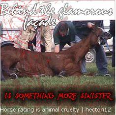 http://i138.photobucket.com/albums/q264/bedazzled-1/horse-racing-is-cruelty-1.gif