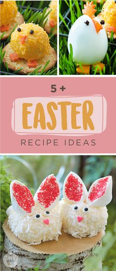 These easy recipes from Hallmark take Easter treats way beyond the pastel. Start with some delightful appetizers of Cheesy Chicks Mini Cheese Balls and Hard-boiled Hens. Next, take a walk on the sweet side with our adorable Pudding Pie Baskets and Bunny Mini Cheesecake Bites. Then celebrate nesting season with some Egg-shaped Easter Cakes and no-fuss Chocolate Bird's Nests filled with candy eggs. Now let's get crackin'!