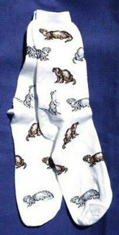 Ferret Socks - google.ca